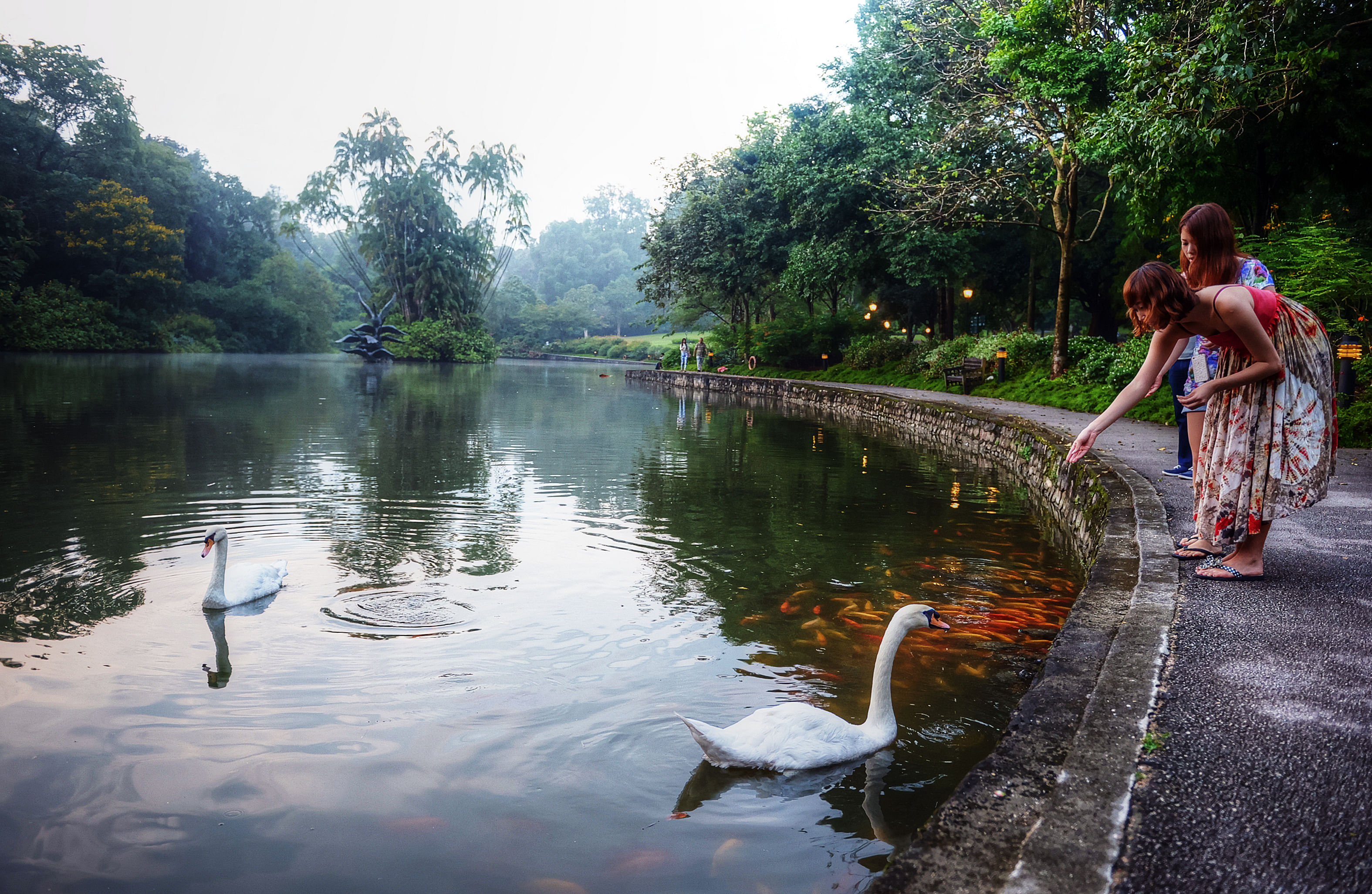 7 Things You May Not Have Known About Singapore Botanic