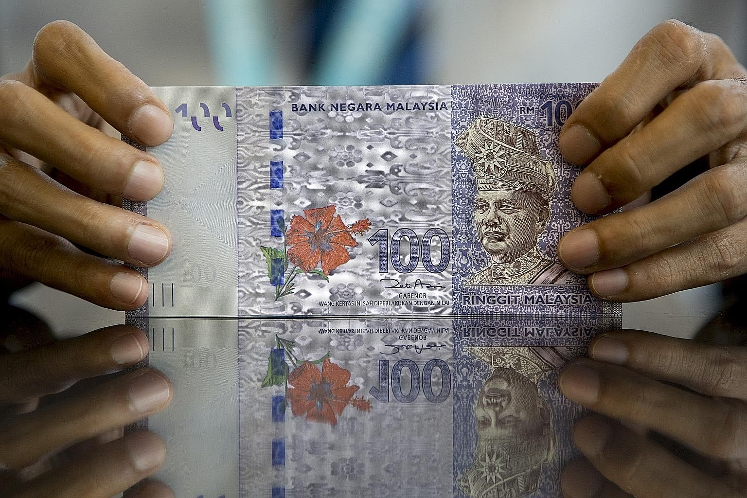 The ringgit has suffered an 18 per cent plunge over the past 12 months, with the currency at its lowest level in 17 years.