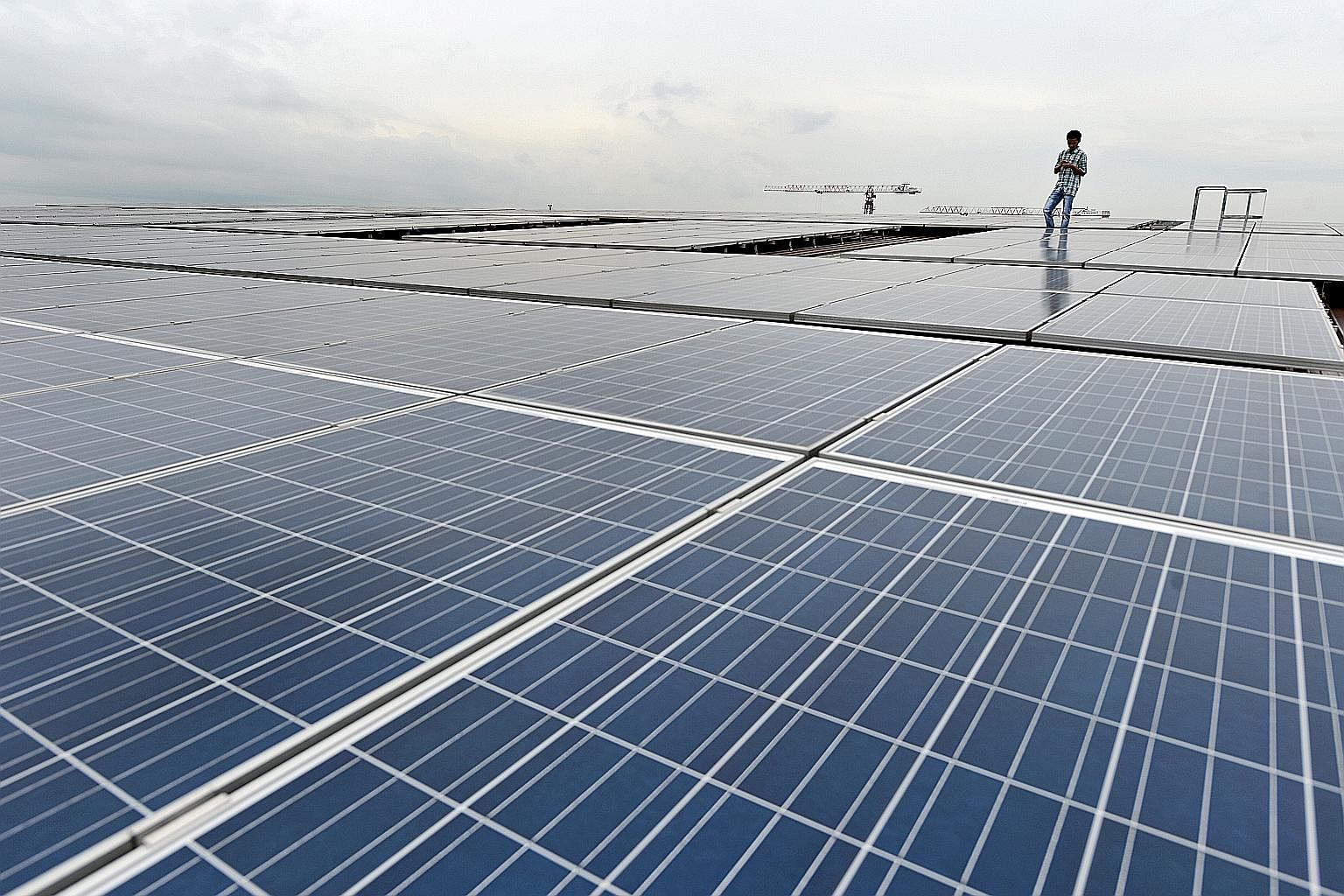 """Solar panels on the roof of Greenpac's """"green factory"""" in Boon Lay. The home-grown green packaging company is living, breathing proof that business success is directly linked to sustainable business strategies, said CEO Susan Chong."""