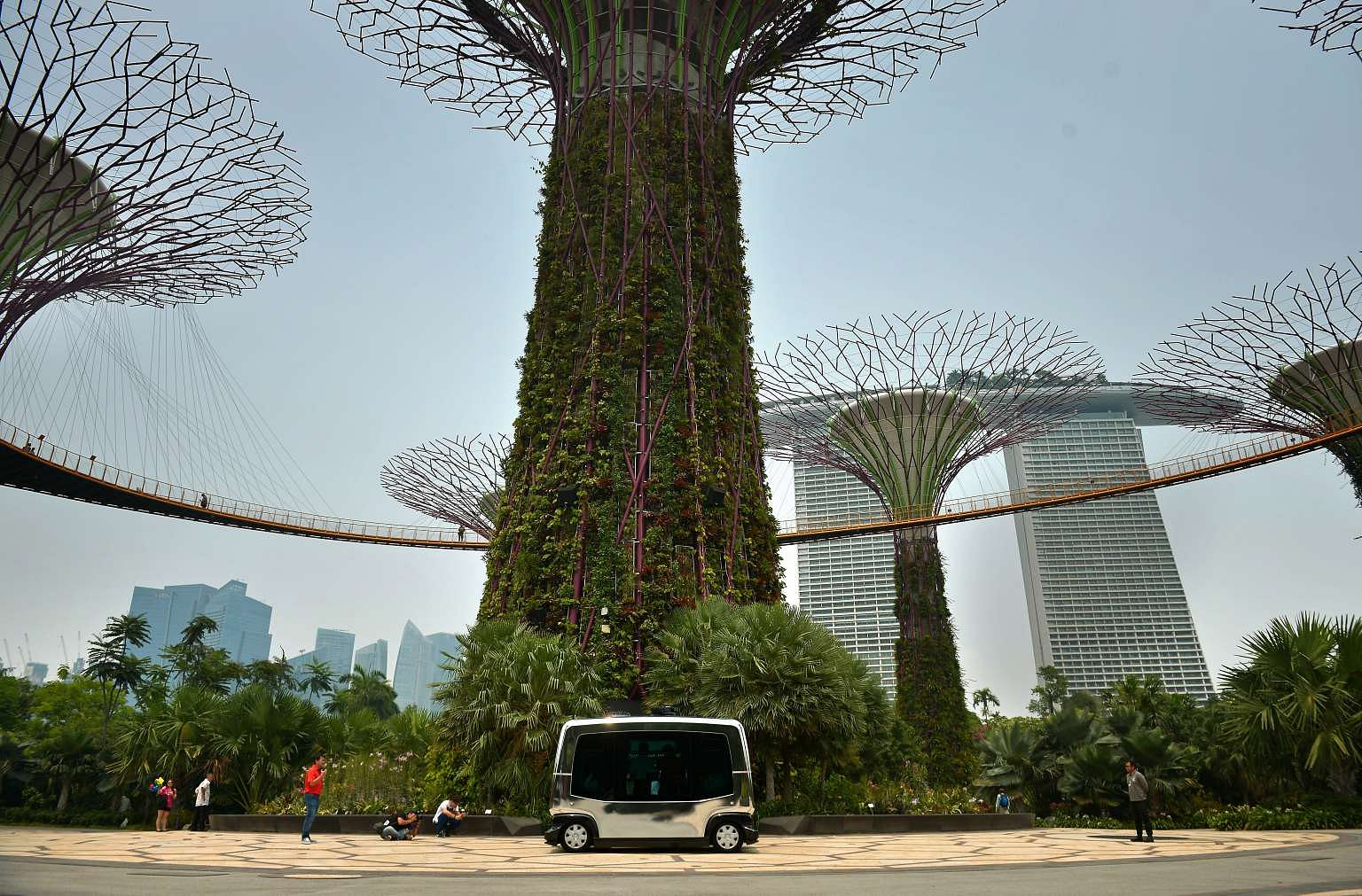 Garden By The Bay Bus autonomous vehicle trials to hit public areas including gardens