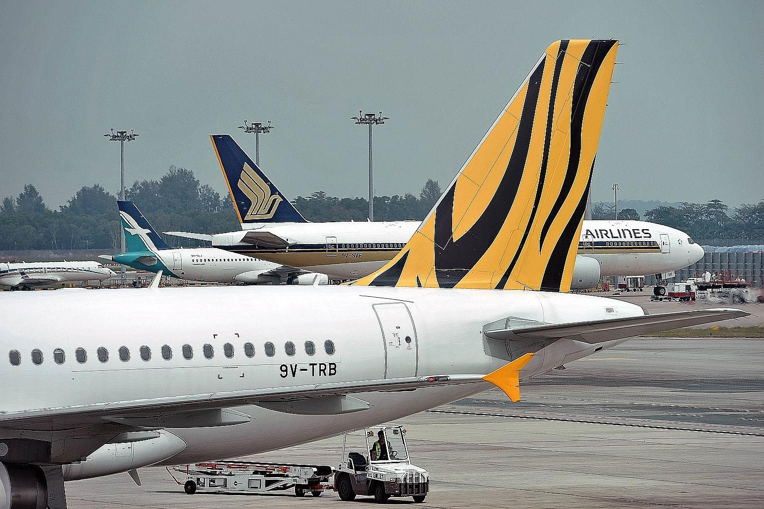 Brand differentiation could become more challenging for SIA with its takeover offer for Tigerair.