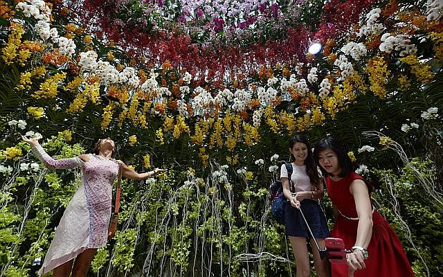 Garden By The Bay Award singapore garden festival 2014 wins top award in france: what's
