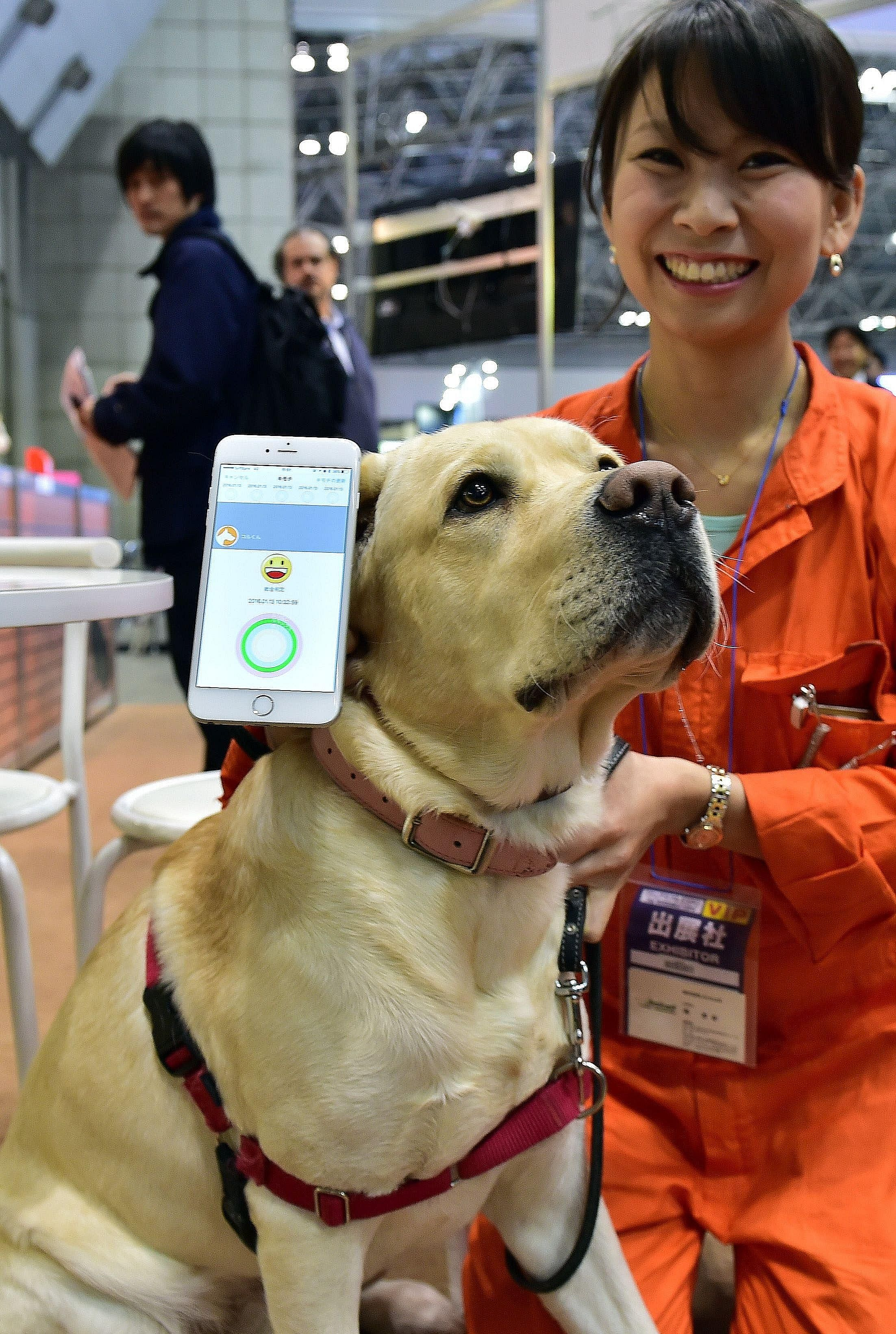 """A dog with a communication device called the """"Internet of Animals"""", developed by Japanese electronics firm Anicall, at the Wearable Device Technology Expo in Tokyo on Wednesday. The device is equipped with sensors to detect motion, temperature and ai"""