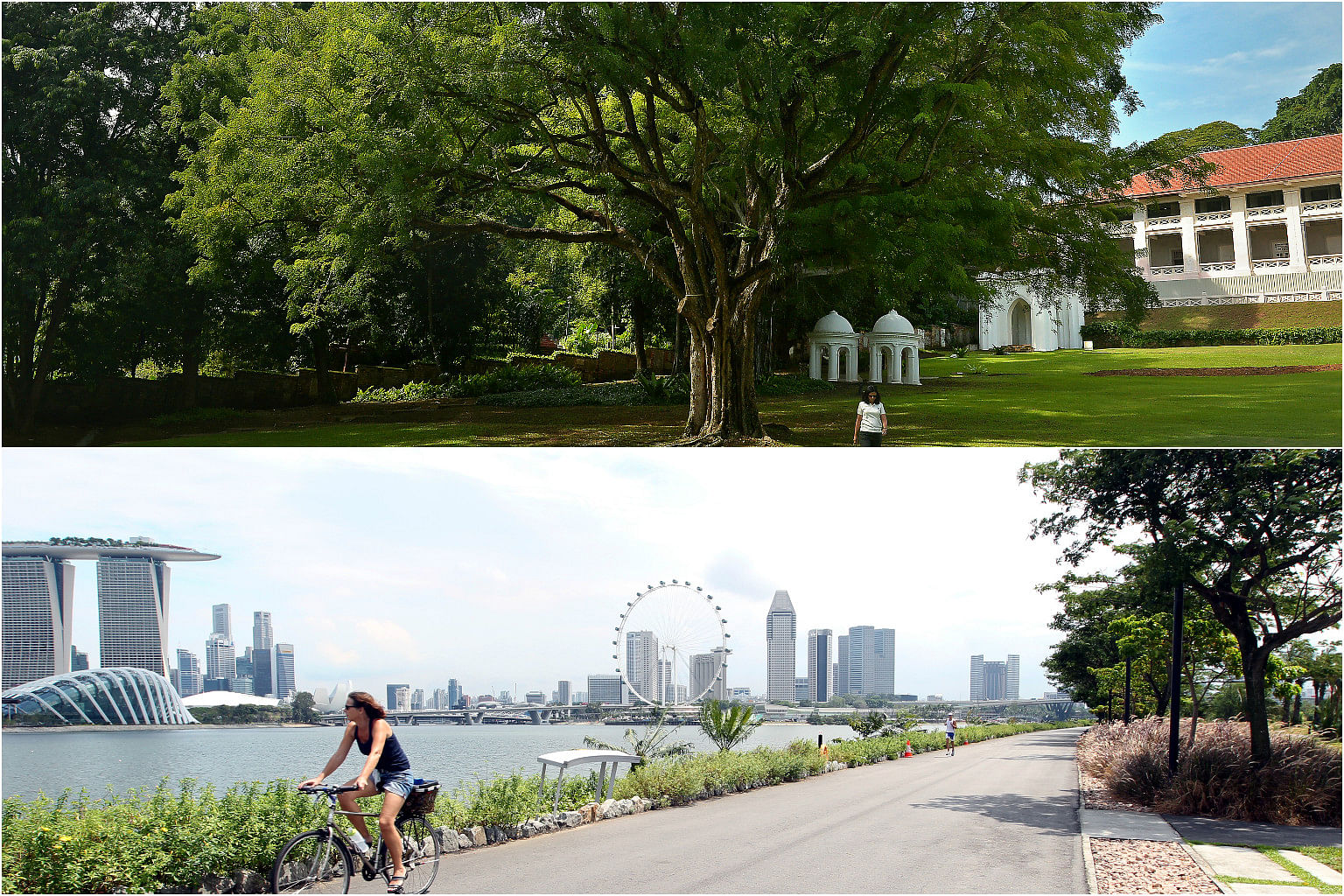 Garden By The Bay East fort canning park, gardensthe bay are potential sites for