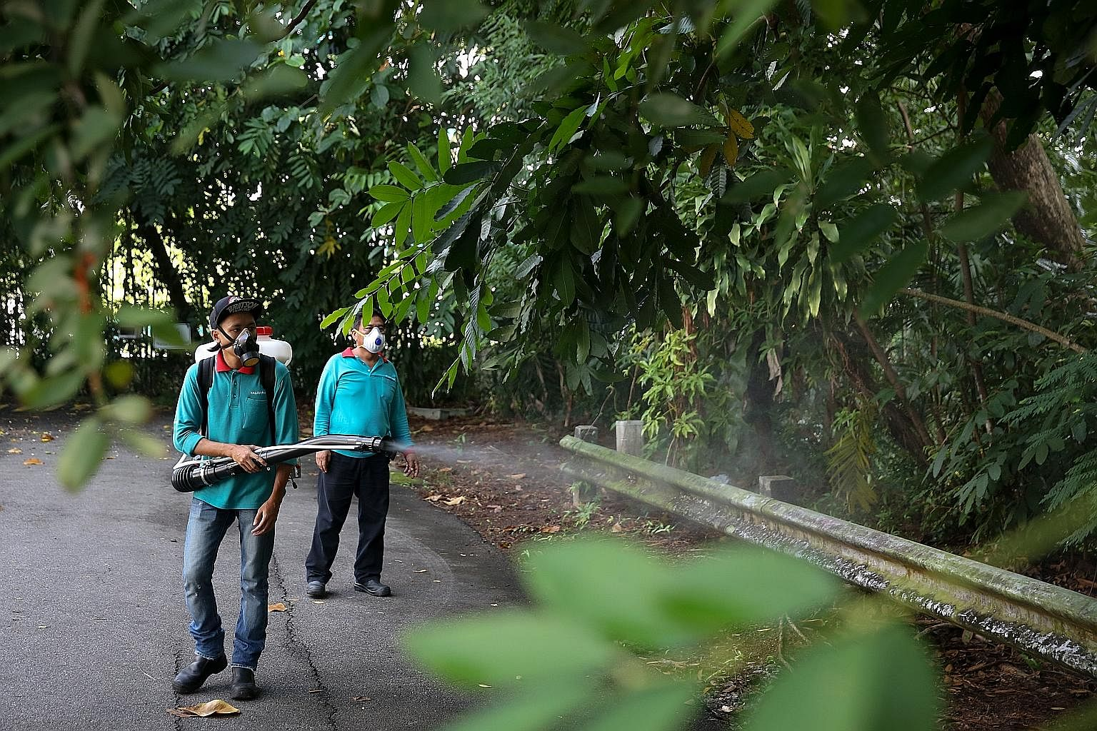 """The Mozzie Wipeout campaign, community-based """"dengue fighters"""" and a community alert system help in the fight against dengue."""