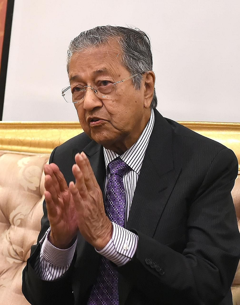 Dr Mahathir's de facto leadership of the opposition's campaign to dislodge Datuk Seri Najib over graft claims linked to financial mismanagement at 1MDB has divided opinion.