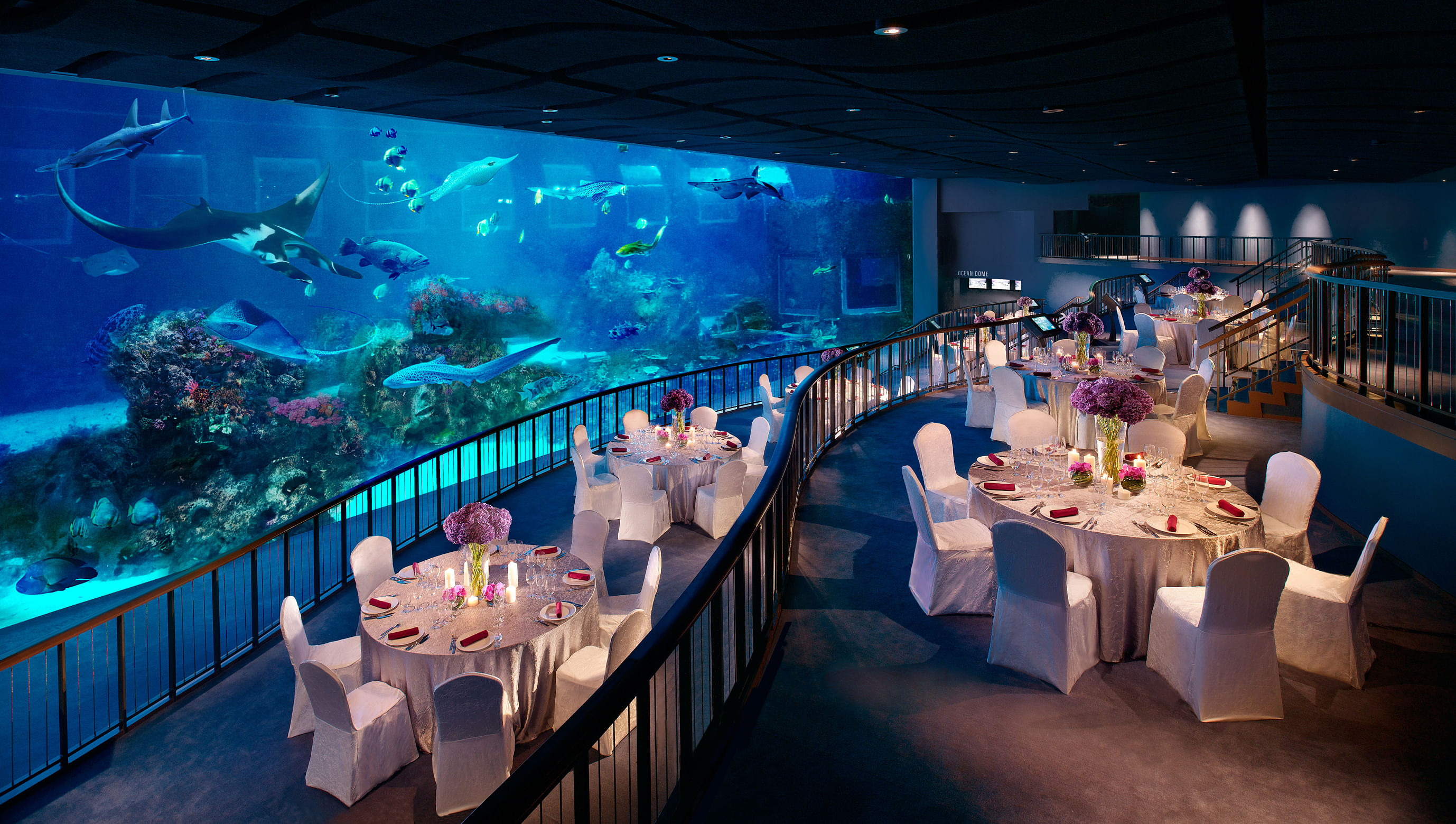 win: reunion dinners at resorts world sentosa, worth more than