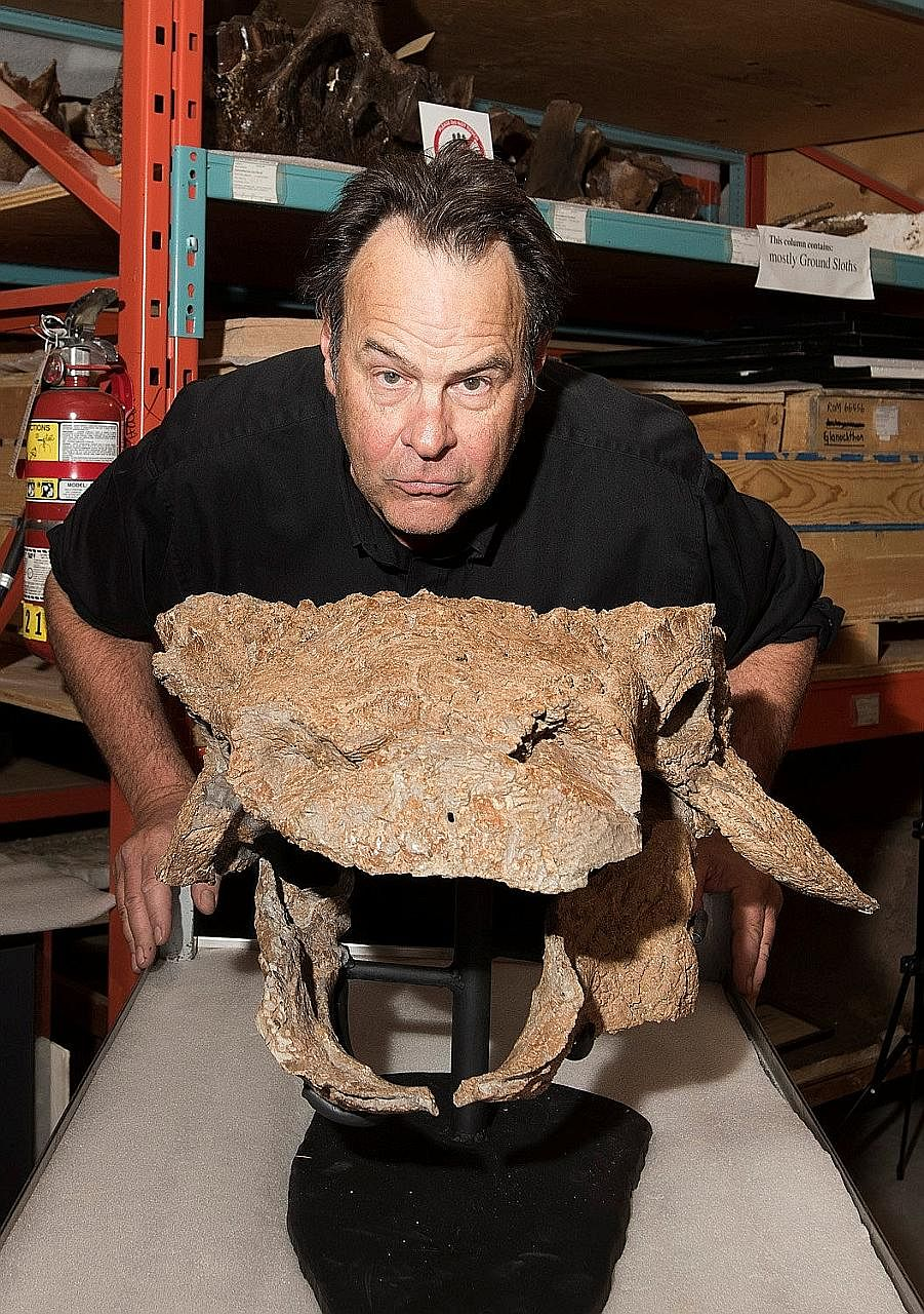 Actor Dan Aykroyd posing at the Ontario museum with fossils of the dinosaur.
