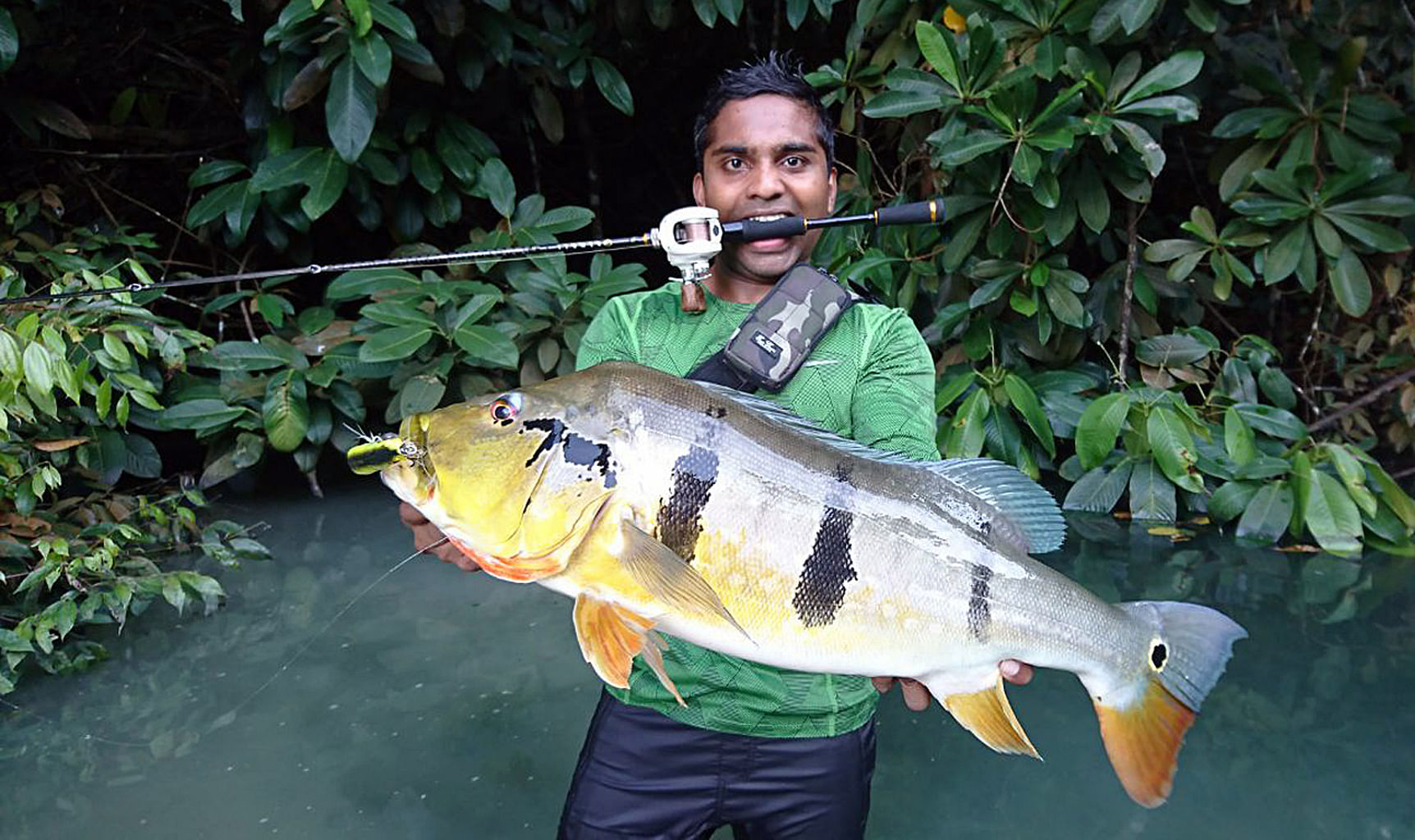 Anglers catch big fish in Singapore waters, Lifestyle News & Top