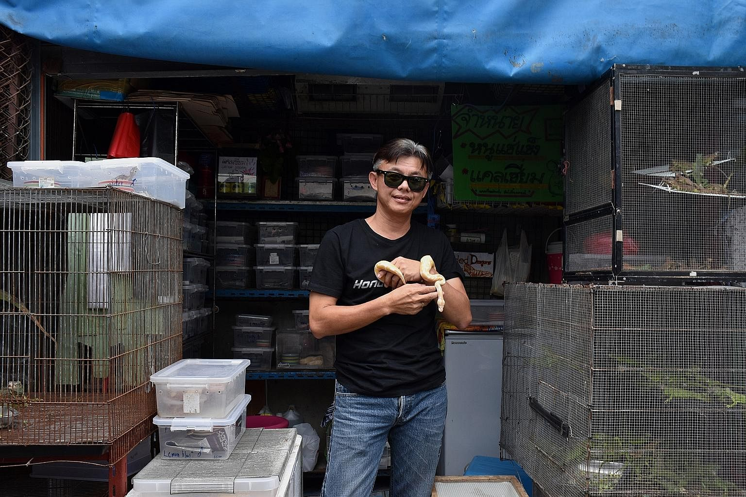 From Chatuchak to Woodlands: Smuggled animals face long and