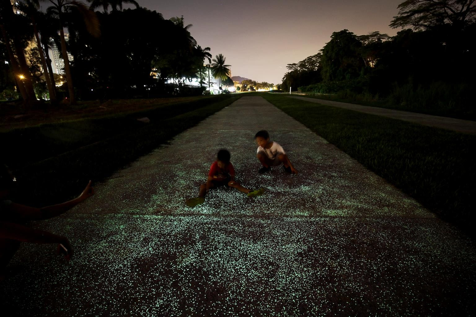 Image result for Singapore tests luminous roads