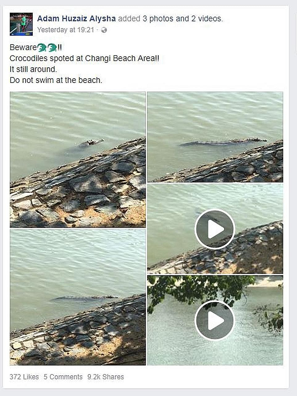 Mr Yusaini Abdul Rahim, an ICA officer who works at Changi Ferry Point Terminal, spotted the crocodile twice while he was on patrol. He posted some photos and videos of the reptile on Facebook to warn others to be careful while in the area.