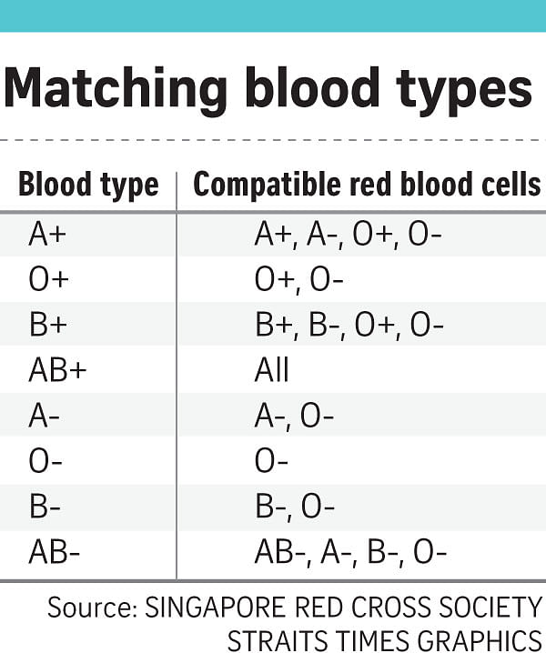 Questions You May Have About Blood Answered Health News Top