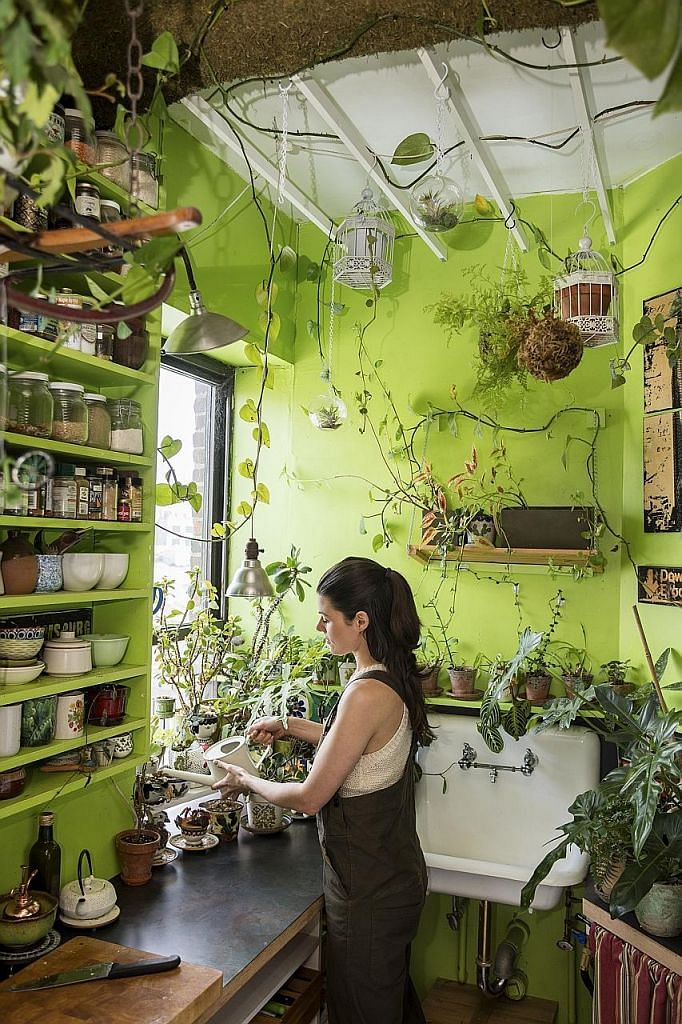 There are nearly 700 houseplants in the home of Ms Summer Rayne Oakes (above); and more than 11,000 plants in the Etsy headquarters (above left) in Brooklyn.