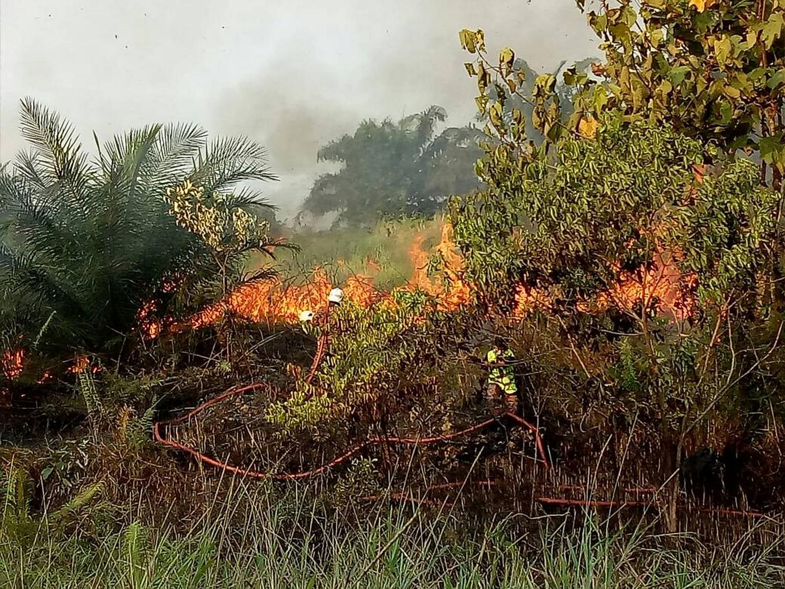 Parts Of Malaysia Hit By Unhealthy Levels Of Haze Se Asia News Top Stories The Straits Times