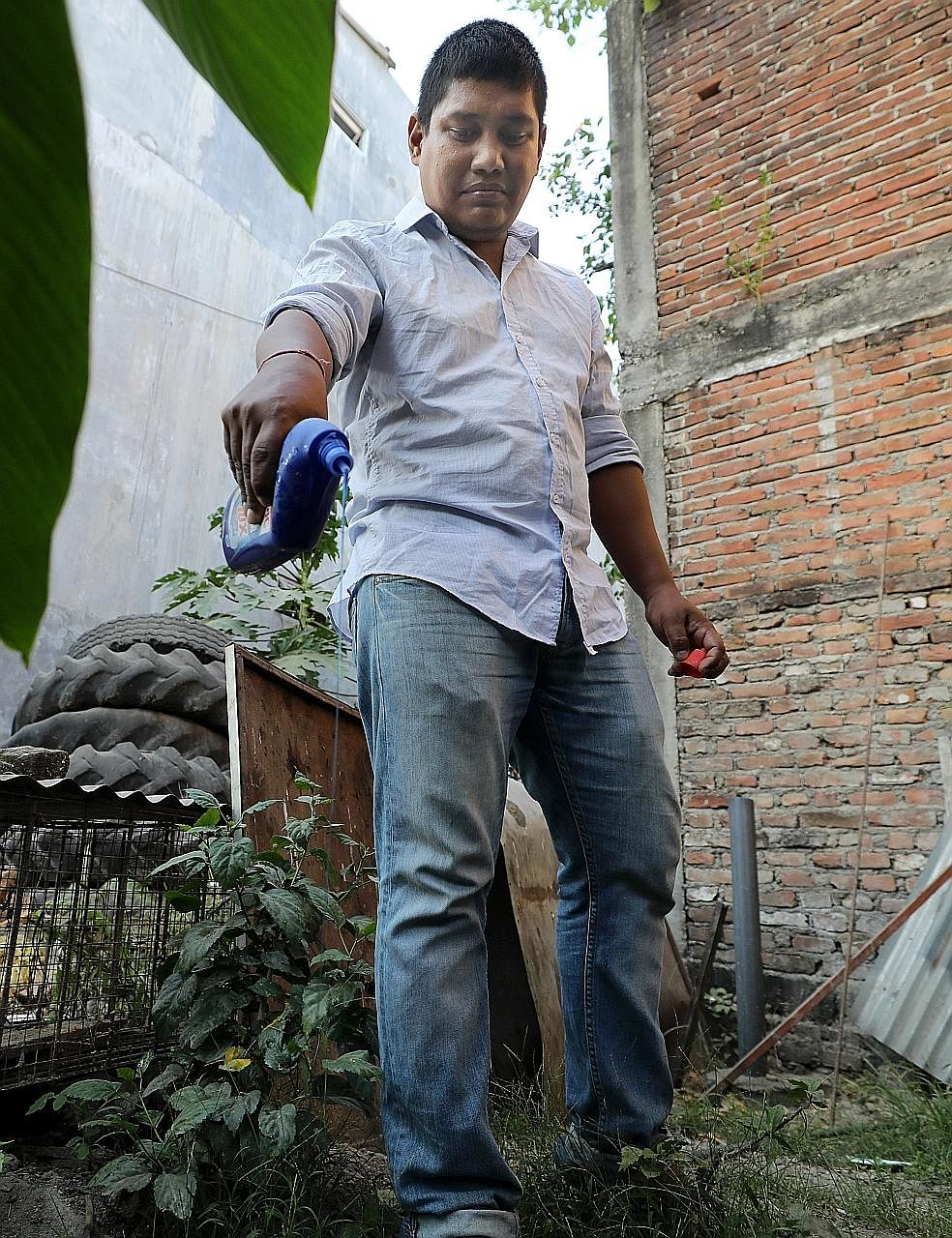 Mr Rana pouring cleaning detergent into a pool of stagnant water at the back of his home, as a preventive measure against mosquito breeding.