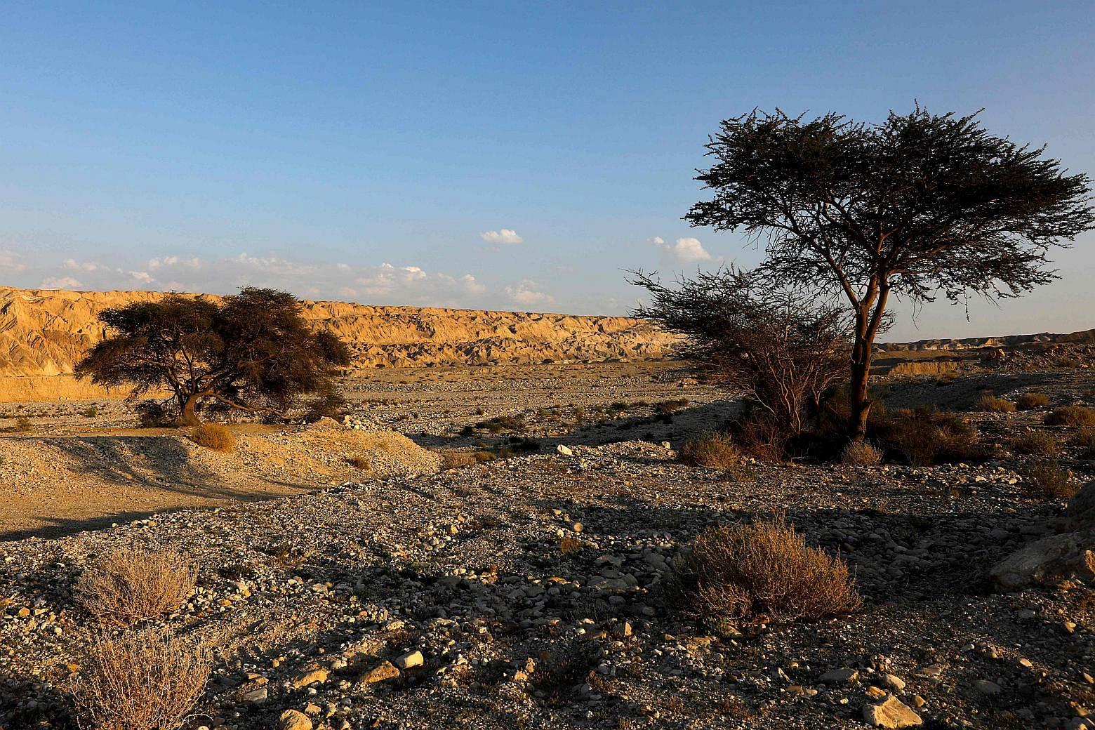 Gua Garam Terpanjang Ditemukan di Israel, Dekat Tempat Istri Lot Jadi Tiang Garam