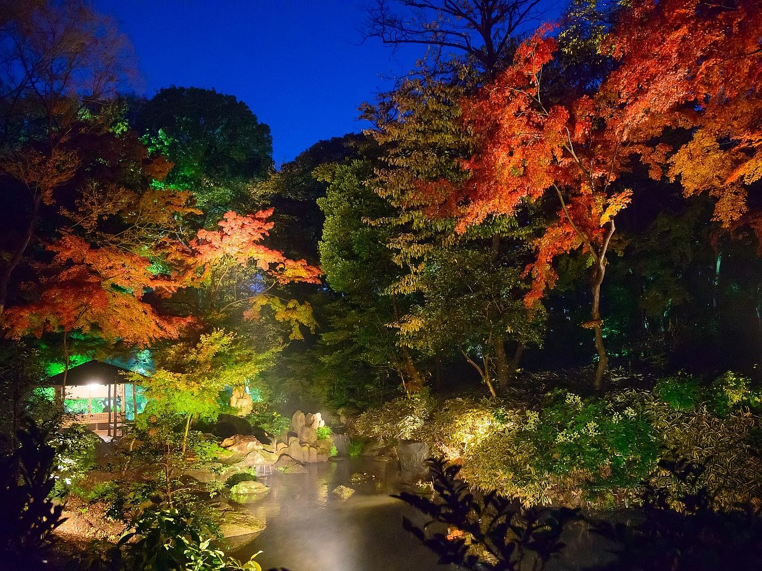 The trees surrounding the lake are lit up after sunset, giving Rikugi-en Garden an ethereal feel.
