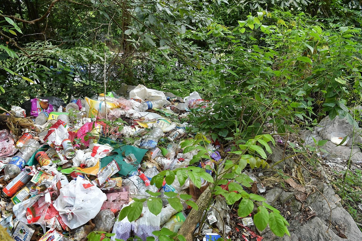The men from the forest congregate in the evenings at the Petir Road and Bangkit Road HDB estates and receive big plastic bags of items. The contents are redistributed and packed into smaller plastic bags. The men disperse while another cyc