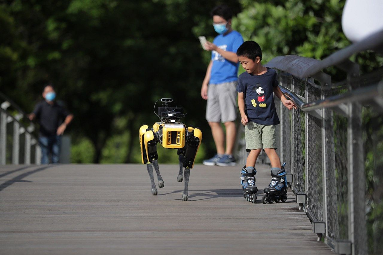 Social Distancing Robot Dogs Now Patrolling Public Spaces