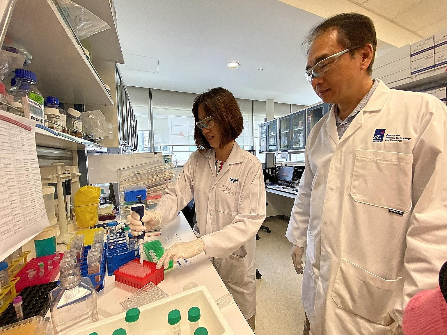 Dr Wang Cheng-I (right) and Ms Eve Ngoh from A*Star's Singapore Immunology Network - in a photo taken before the circuit breaker period - and their team are working with Chugai Pharmabody Research from Japan to engineer the antibody for clinic