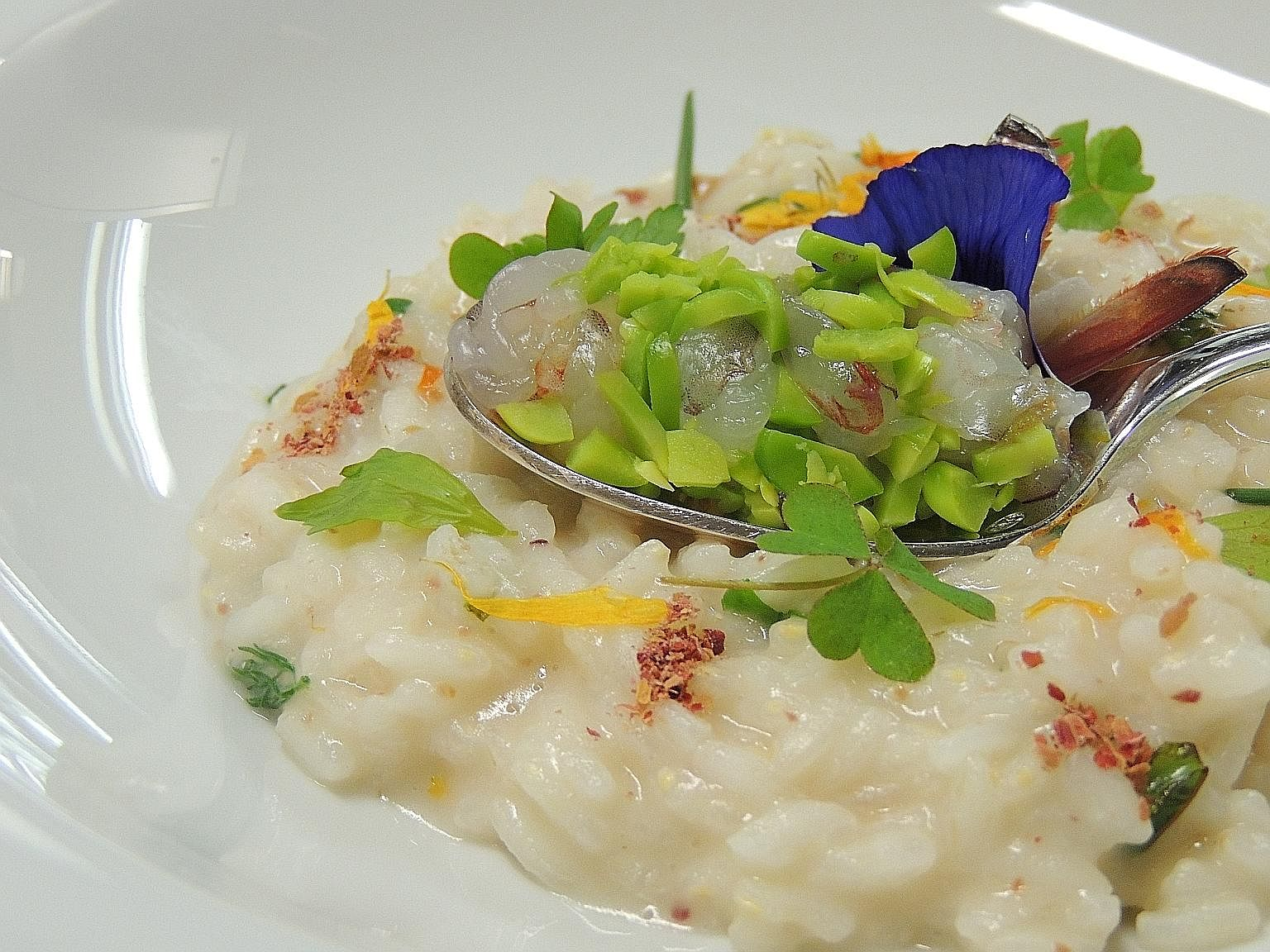 Risotto, Italy.