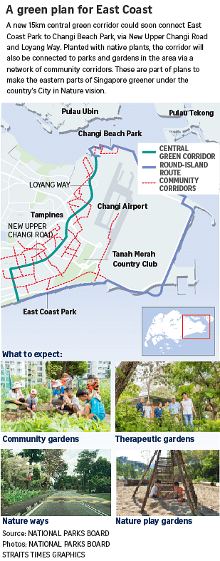 Plan For New 15km Green Corridor To Connect East Coast Park To Changi Beach Park Environment News Top Stories The Straits Times