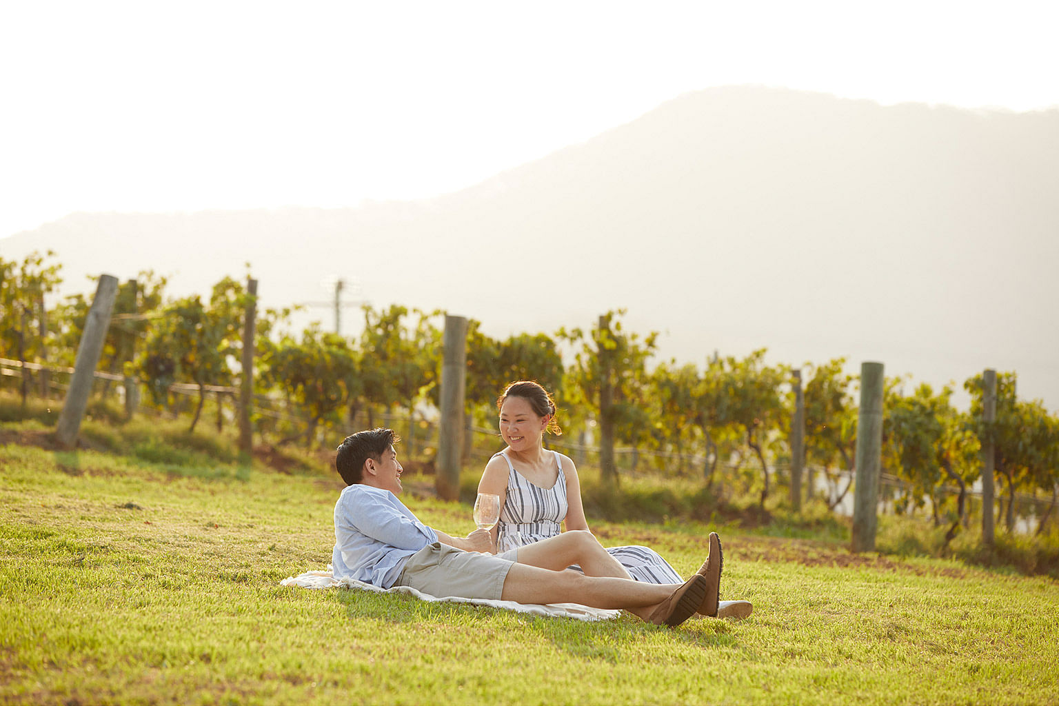 Hunter Valley, New South Wales, Australia, Wine