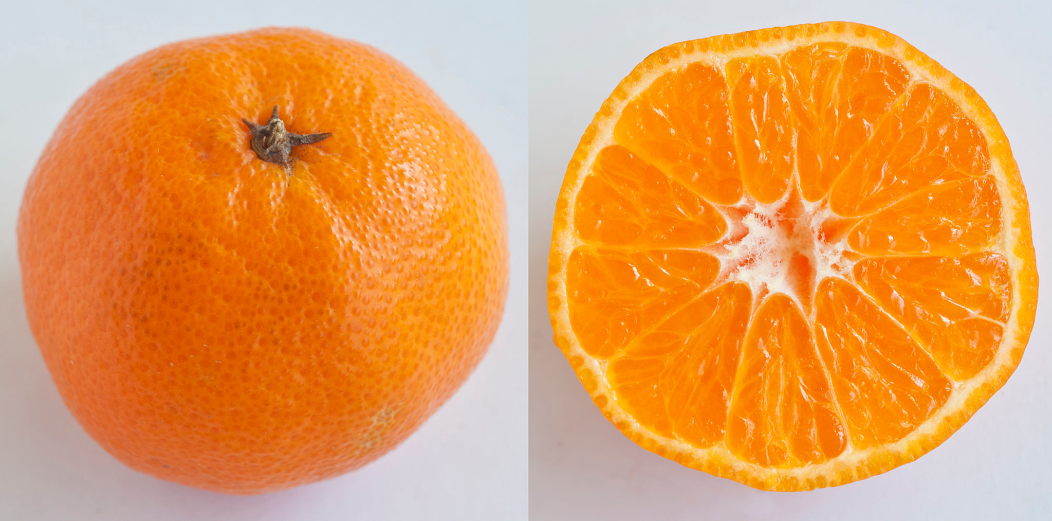 are mandarin oranges on a bland diet