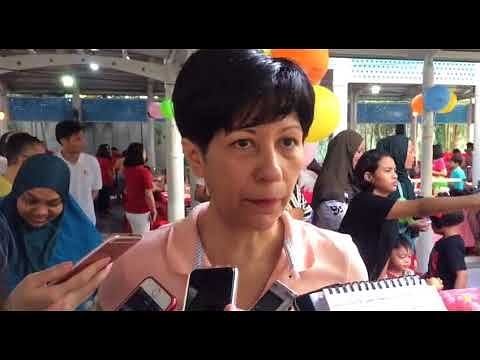 Other pressing issues for 4G ministers to focus on besides leadership succession: Indranee Rajah