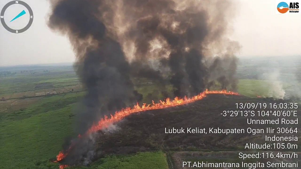 Indonesia seals off plantations operated by 29 firms over fires,