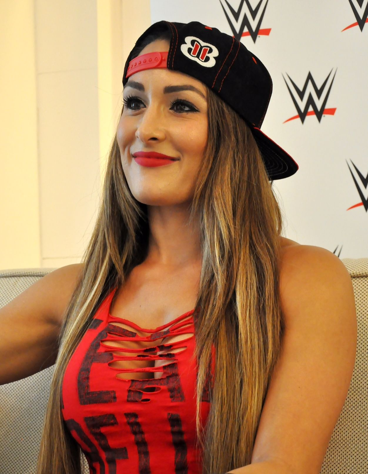 Nikki Bella earned a  million dollar salary, leaving the net worth at 1 million in 2017