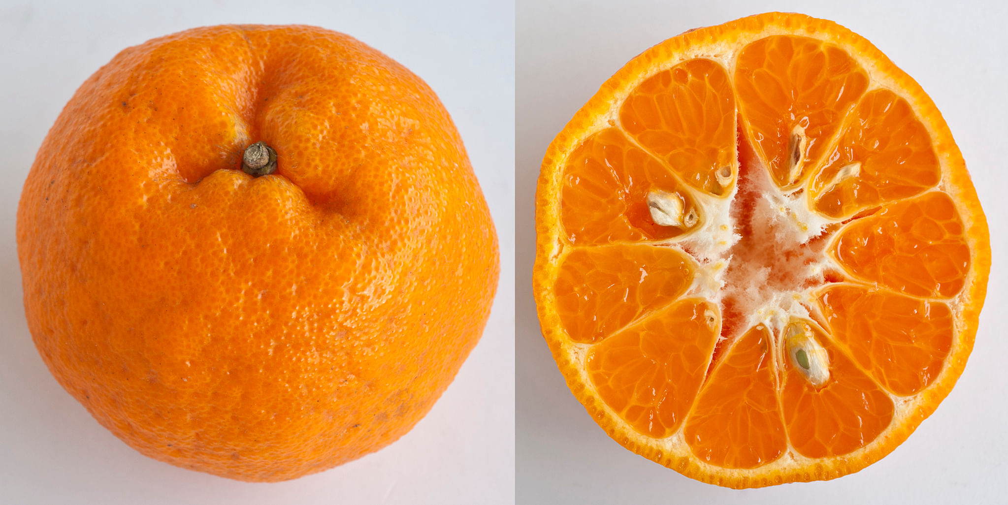 Mandarin Orange Images