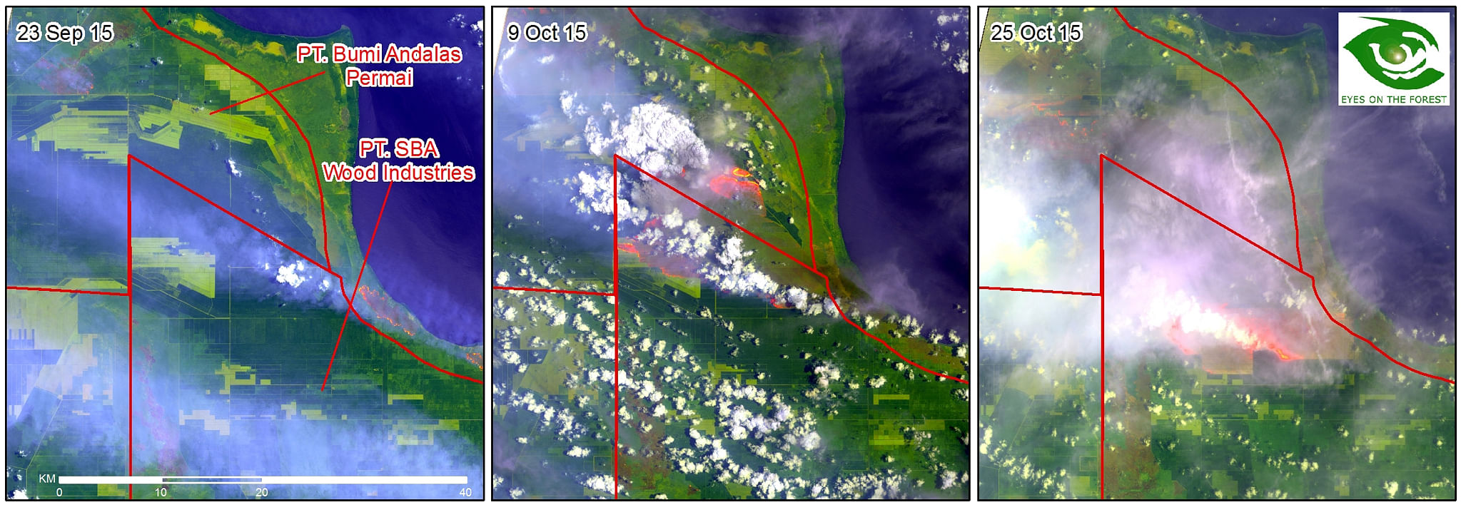 "Satellite imagery of concessions belonging to Bumi Andalas Permai and Sebangun Bumi Andalas Wood Industries in South Sumatra shows the progression of fires. The firms and Bumi Mekar Hijau have received ""Preventative Measures Notices"" from Singapore's"