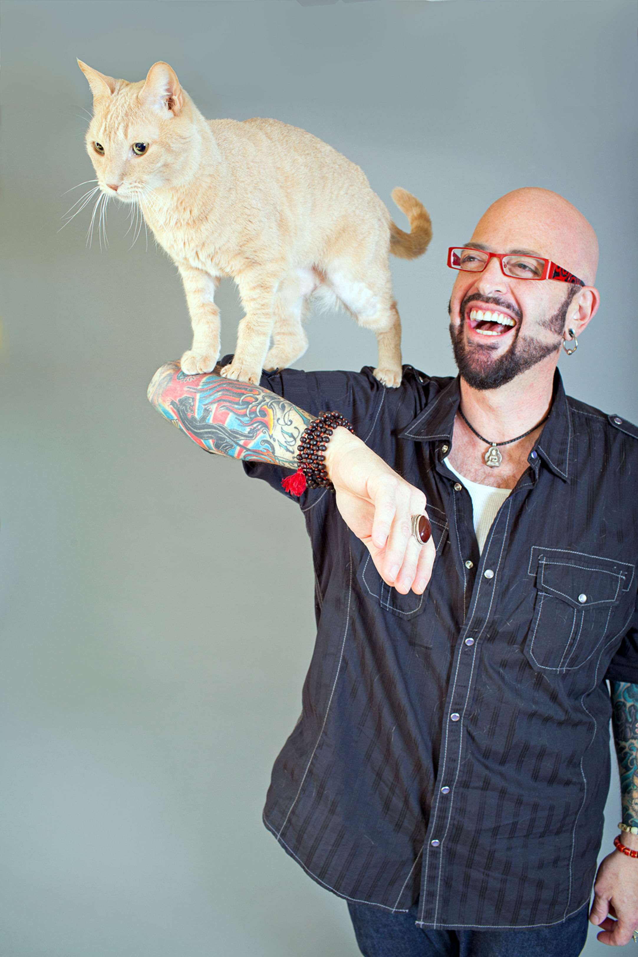 Maestro of cat mojo entertainment news top stories for Jackson galaxy cat mojo