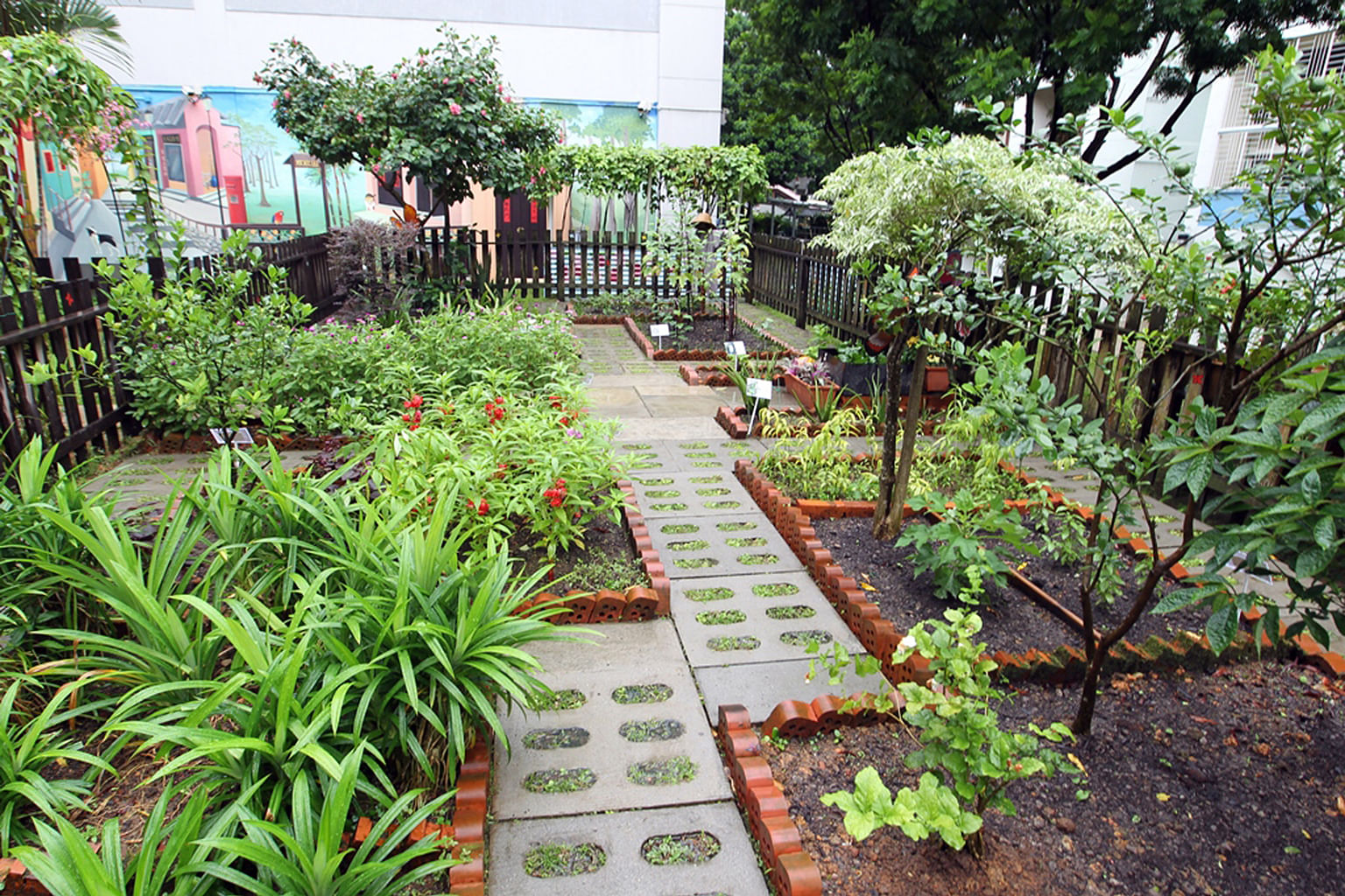 Blooming spirit: Top community gardens in Singapore, Home ...