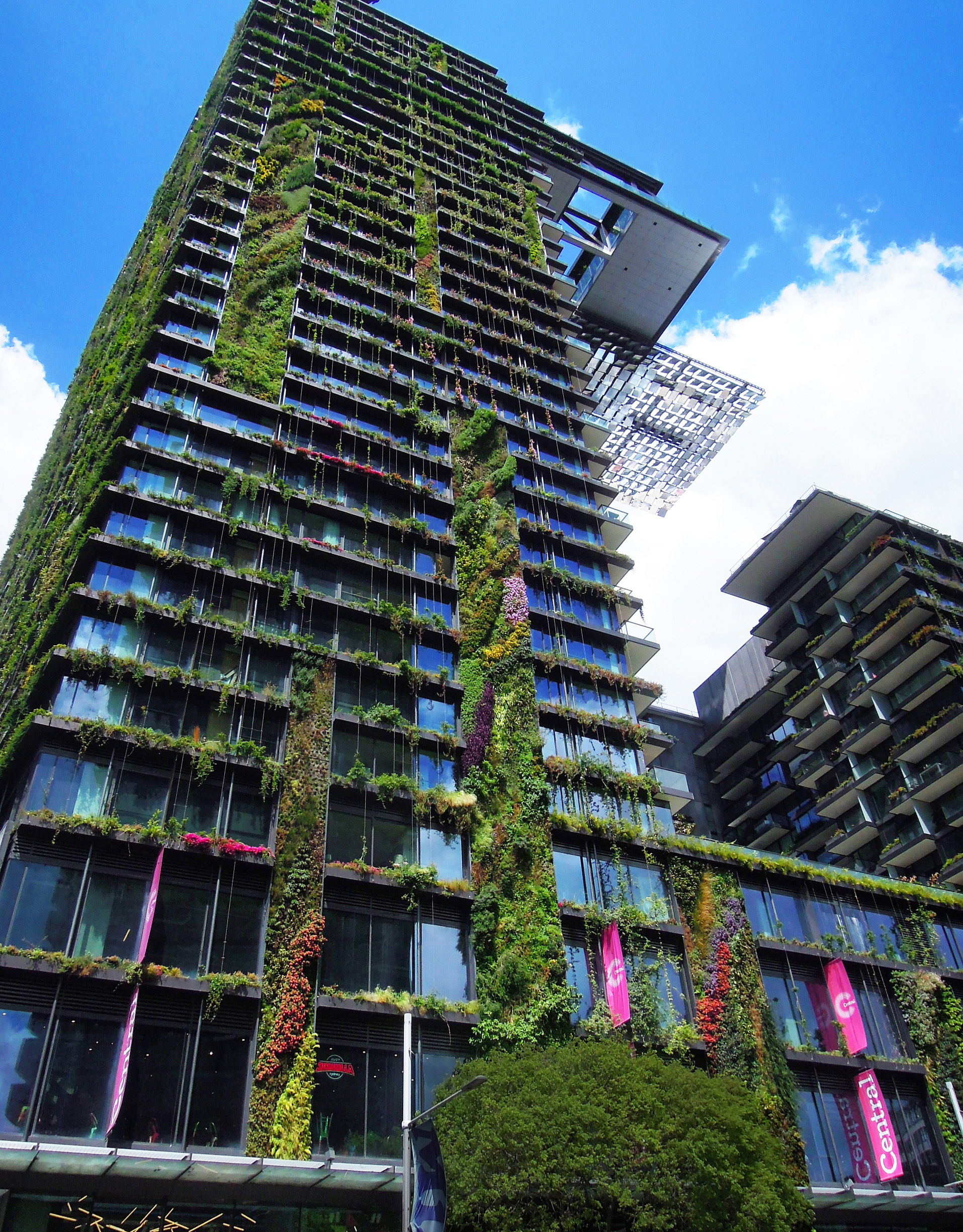 Patrick Blanc Creator Of Vertical Gardens Says Many Get It Wrong