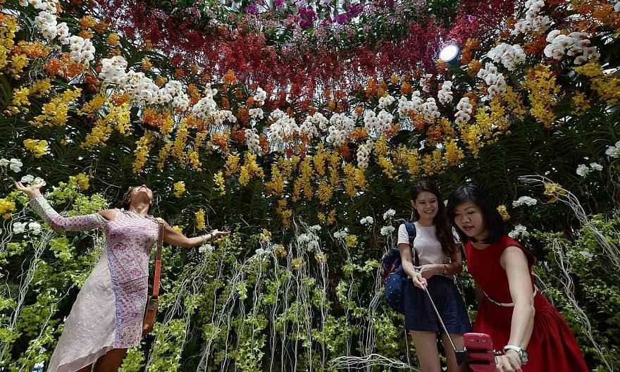 The recently concluded Singapore Garden Festival has won the International Garden Tourism Achievement of the Year award, at the Gardens Without Limits Conference held on Thursday in Metz, France. -- PHOTO: ST FILE