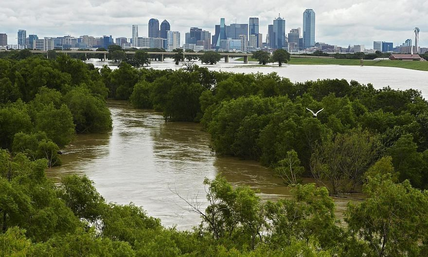The Trinity River burst its banks in Dallas, Texas, USA, on May 30, 2015. Sunshine and drier weather were forecast for most of flood-weary Texas after days of heavy rain. -- PHOTO: EPA