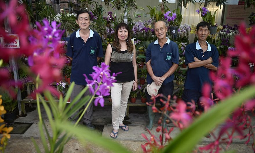 Mr Ng Kee Hong (second from right) started his job as gardener at wholesale florist Ji Mei Flower two years ago. He is one of five employees over the age of 62 in the firm, including (from left) gardener Loh Merng Chue, 67, administration clerk Saw Lay Ki