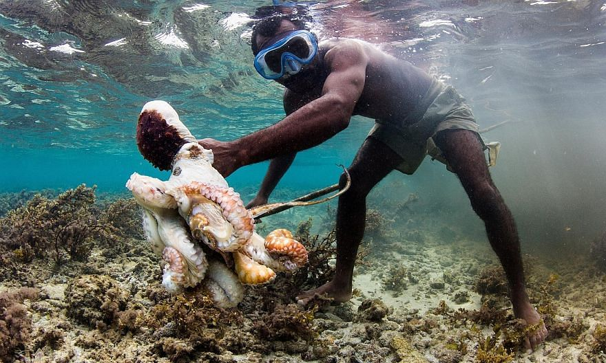 """Velvetine, of the Vezo community in Madagascar, says gleaning octopus is """"the only way I can earn money"""". The octopus is used as the catalyst to protect the eco-system while providing a living for the people."""