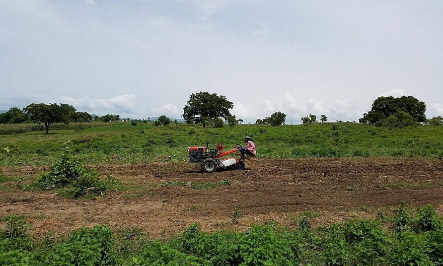 Since the launch of Hello Tractor in mid-2014, farmers reportedly saw their yields rise by 200 per cent, using a machine that is 40 times faster than manual labour.