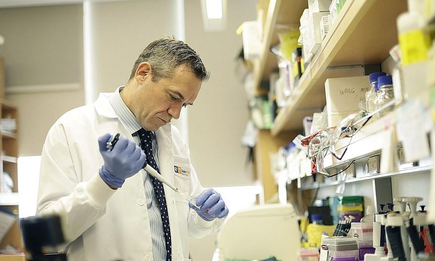 The new study led by Professor Stuart Cook has overturned previous findings about the role of protein interleukin 11.