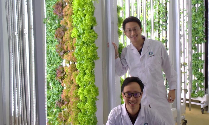 Agency for Science, Technology and Research (A*STAR), innovation, agritech, food security