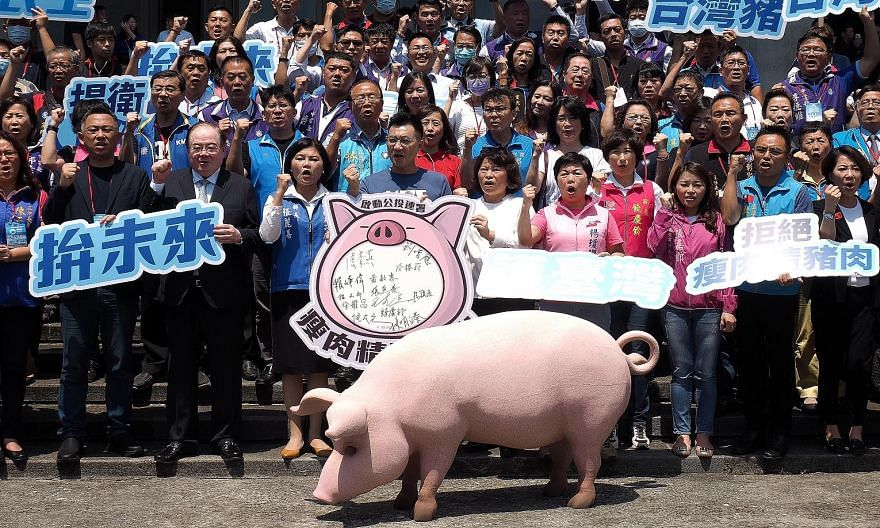 Members of Taiwan's main opposition Kuomintang protesting in Taipei earlier this month against President Tsai Ing-wen's lifting of the ban on importing US pork with ractopamine, a feed additive to make meat lean. PHOTO: EPA-EFE