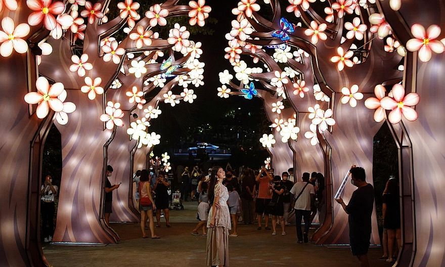 Gardens by the Bay was alight with lanterns yesterday evening as it welcomed the first visitors for its annual Mid-Autumn Festival celebrations. Visitors can seek out the Apricot Grove lantern set (above) at Golden Garden, where they will find pale-p