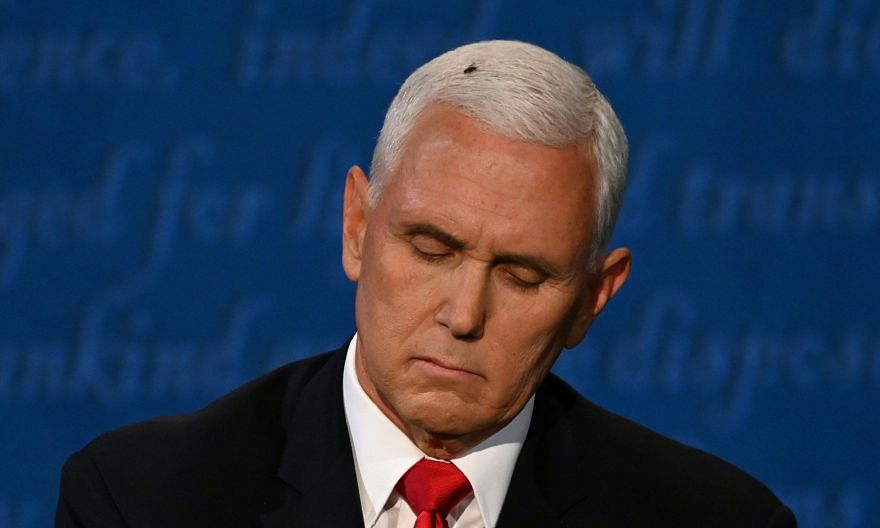 The fly landed and rested on the head of US Vice-President Mike Pence during the vice-presidential debate against Democratic vice-presidential nominee Kamala Harris, in Kingsbury Hall at the University of Utah, on Wednesday.