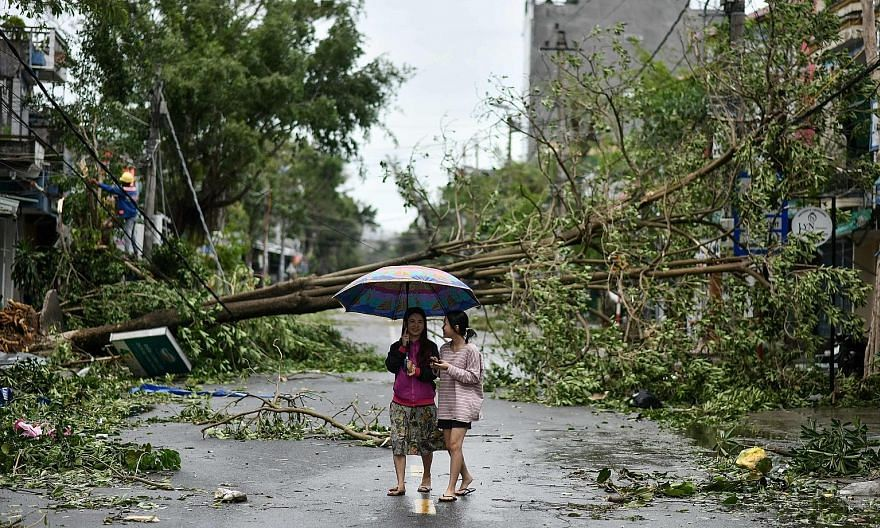 Women walking past uprooted trees in central Vietnam's Quang Ngai province yesterday, in the aftermath of Typhoon Molave. PHOTO: AGENCE FRANCE-PRESSE