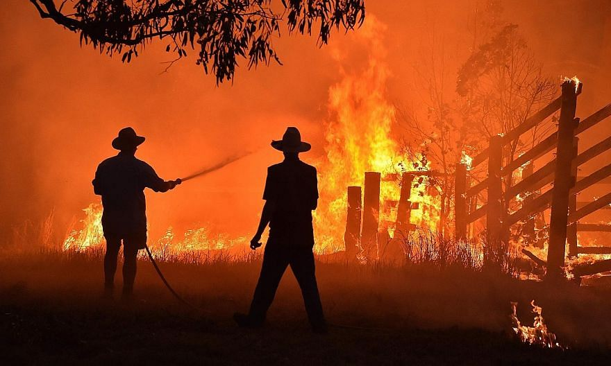 An inquiry into Australia's bush fire crisis (above) late last year and early this year warns that climate-worsened disasters will become more frequent, more costly and more severe.