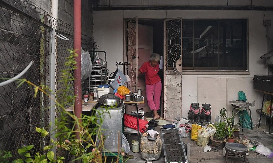 Mr Sam Guam, 64, encouraging Baylen Tan, two, to stroke one of his 12 reared chickens as Baylen's mother Meggie Huang, 36, a research manager, looks on. Retired seamstress Koh Peck Choon, 76, at her Geylang Lorong 3 home on Oct 29. Within weeks, she